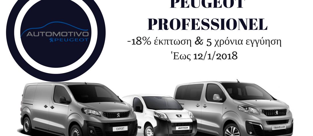 PEUGEOT PROFESSIONEL